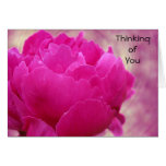 Thinking of You - Peony Swirl Cards