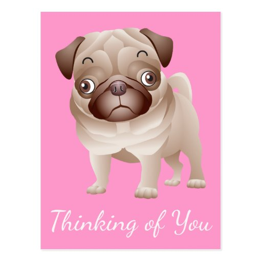 Thinking of You Pug Puppy Dog Pink Postcard