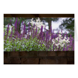 Thinking of You, The Garden Wall Card