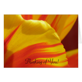Thinking of You Tulip Card