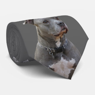 Thinking Pitbull Tie