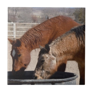 Thirsty Horse Friends Share Water Western Tiles