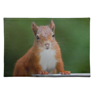 Thirsty Squirrel Placemat