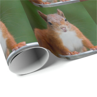 Thirsty Squirrel Wrapping Paper
