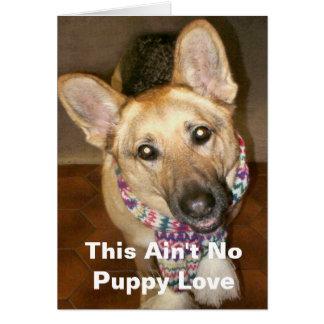This Ain't No Puppy Love Card