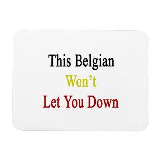 This Belgian Won t Let You Down Rectangular Magnets