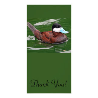 This Blue billed Duck Is Gliding On The Surface Customized Photo Card