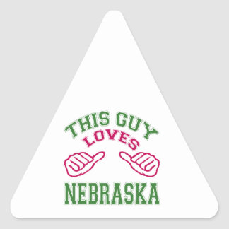 This Guys Loves Nebraska Triangle Stickers