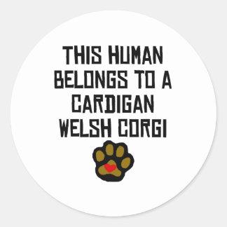 This Human Belongs To A Cardigan Welsh Corgi Classic Round Sticker