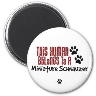 This Human Belongs to a Miniature Schnauzer Refrigerator Magnets