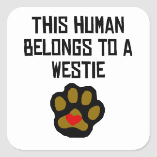 This Human Belongs To A Westie Square Sticker