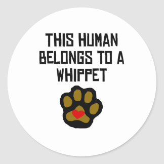 This Human Belongs To A Whippet Classic Round Sticker