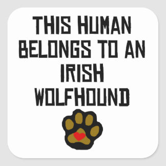 This Human Belongs To An Irish Wolfhound Square Stickers