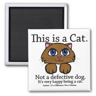 This is a Cat Magnets