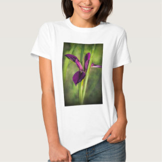 This is a Louisiana Gamecock Wildflower - Iris hex Tshirts