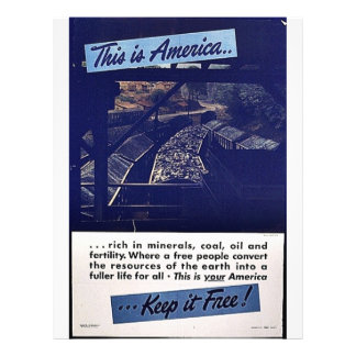 This Is America Keep It Free! Personalized Flyer