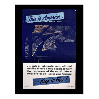 This Is America Keep It Free! Postcard