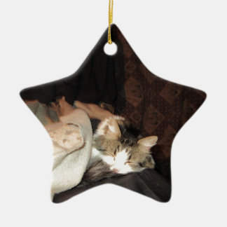 This is how real cats sleep! Double-Sided star ceramic christmas ornament