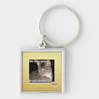 this is my opinion Silver-Colored square key ring