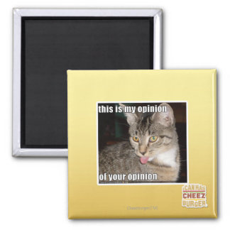 this is my opinion square magnet