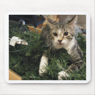 This is MY Tree! Mouse Pad