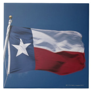 This is the State Flag flying in the wind. it is Large Square Tile
