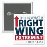 This is what a Right Wing Extremist Looks Like Badge