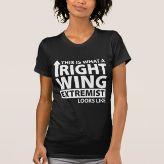 This is what a Right Wing Extremist Looks Like Tee Shirt