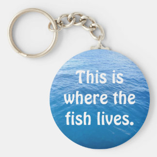 This is where the fish lives. basic round button key ring