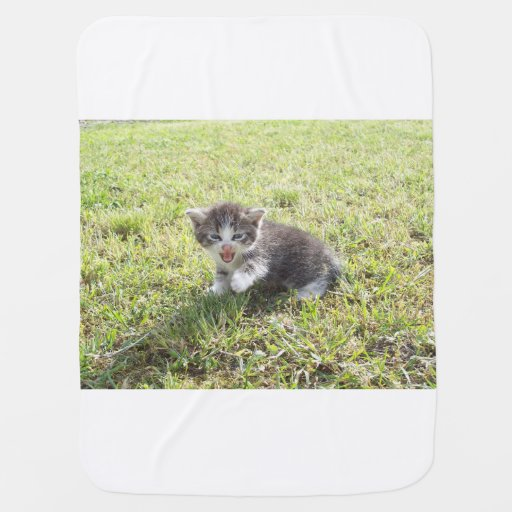 This Kitten fights for Freedom Baby Blanket