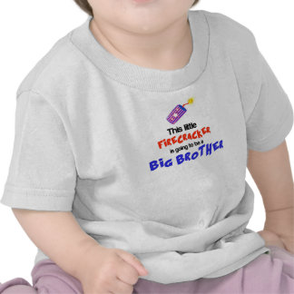 This little Firecracker, 4th of July Big Brother T Shirts