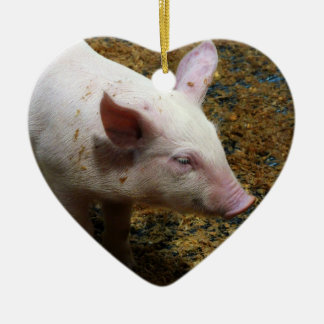 This Little Piggy - Baby Piglet Photo Christmas Ornament