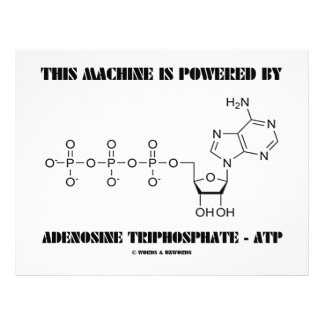 This Machine Is Powered By Adenosine Triphosphate Full Color Flyer