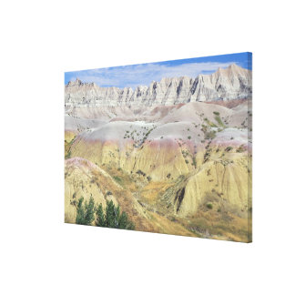 This valley in Badlands National Park features yel Canvas Print
