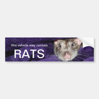 this vehicle may contain rats bumper sticker