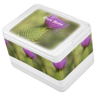 thistle-4.jpg igloo cooler