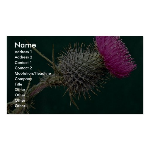 Thistle head pink flower business cards