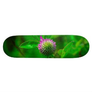 Thistle macro 20 cm skateboard deck