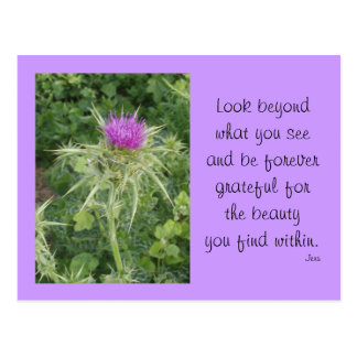 Thistle Post Card