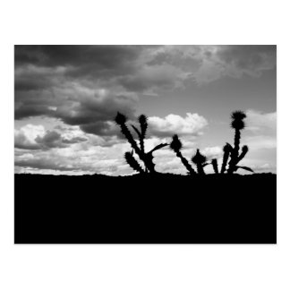 Thistle Silhouette BW 10_4_08 Postcard