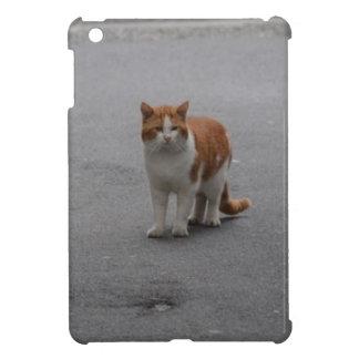 Thomas Ginger And White Cat iPad Mini Covers