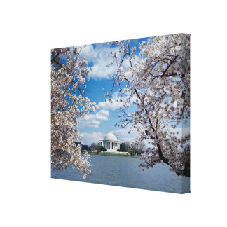 Thomas Jefferson Memorial with Cherry Blossoms Gallery Wrap Canvas