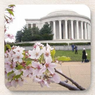 Thomas Jefferson Memorial with cherry blossoms Coaster