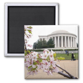 Thomas Jefferson Memorial with cherry blossoms Square Magnet