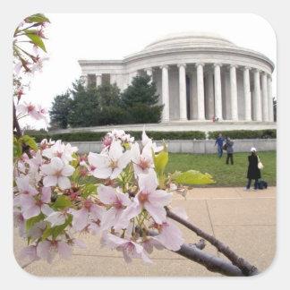 Thomas Jefferson Memorial with cherry blossoms Square Sticker