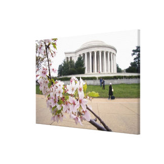 Thomas Jefferson Memorial with cherry blossoms Stretched Canvas Prints