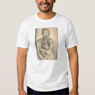 Thoracic cavity tee shirt