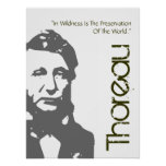 Thoreau Preservation Of The World Poster