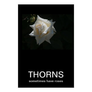 Thorns Sometimes Have Roses Demotivational Poster