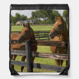 Thoroughbred horse farm in Marion County, Drawstring Backpacks